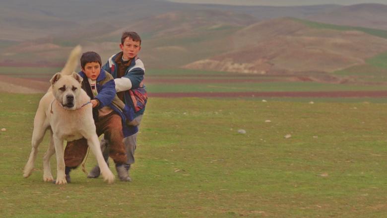 Her Türk Vatandaşının İzleyip, Paylaşıp Desteklemesi Gereken 7 Yerli Film Önerisi