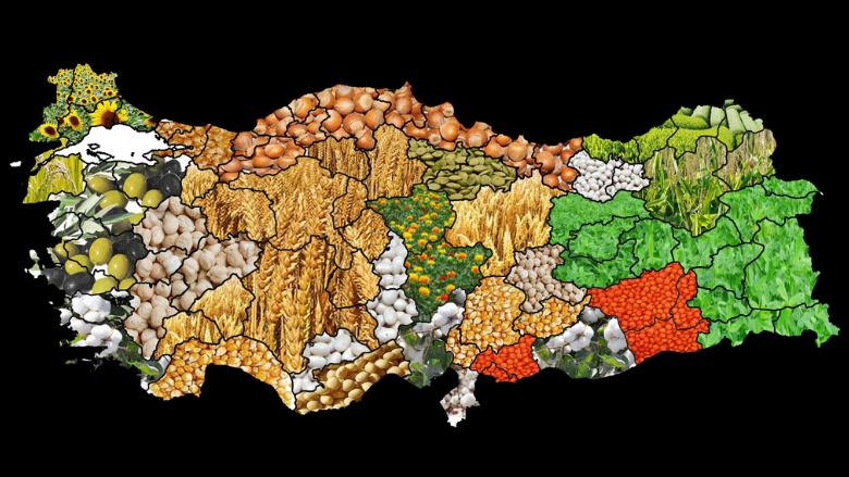"""Küresel Gıda Terörünü Konu Alan Etkileyici Bir Kitap: """"Saklı Seçilmişler"""""""