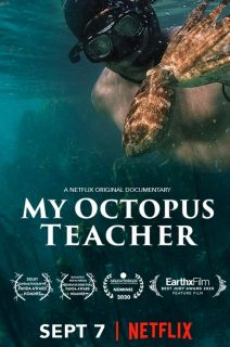 My Octopus Teacher (2020)